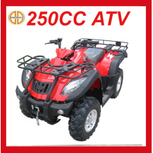 New 250cc Petrol Quad Bike for Sale