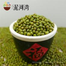 Vente chaude, petit haricot mungo vert pour la germination, 2012 nouvelle récolte