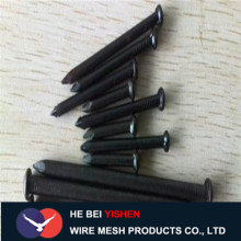 Black/hardened steel concrete nails