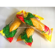High Quality Good Tasty Sweet Fruit Corn