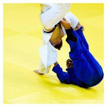 LinyiQueen tatami usati judo for 5 cm gonflable tapis de segunda mano prix tatami judo mat