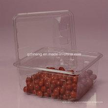 Caja de plástico transparente personalizada Walmart para alimentos (PET 003)