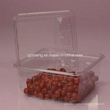Caixa plástica clara feita sob encomenda de Walmart para o alimento (ANIMAL DE ESTIMAÇÃO 003)