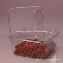 Walmart Custom Caja de plástico transparente para alimentos (PET 003)