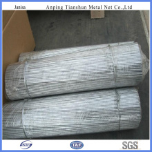 Galvanized Cut Wire with High Quality (TS-J730)