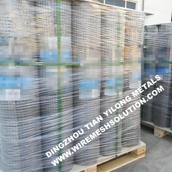 Welded Wire Mesh for Animals Galvanized