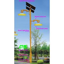 WPSRR-8906 3~15m Municipal Road Hot DIP Galvanized Steet Light Pole style