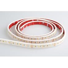 SMD 3528 192 leds / M RGBW IP20 IP65 strip