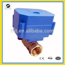 CWX 10mm BSP 9-24V / DC / AC série mini motorizado motor atuador