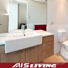 Country Style Veneer Bathroom Cabinets Vanity (AIS-B005)
