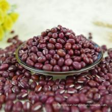 Small Red Beans / adzuki beans / azuki bean