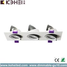 Proyector Downlight Downlight de alta potencia LED 36W 5000K