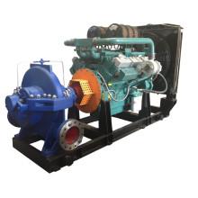 Дизельный двигатель насоса (XS300-435)