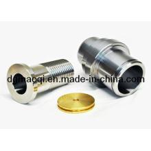 Componentes de moldeo por inyección de plástico de piezas de torneado CNC (MQ124)