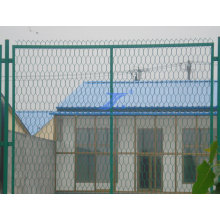 De buena calidad Hexagonal patio malla de malla de cercas (TS-L28)