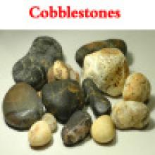 Guijarros (coloreado) / Piedra / Piedra del jardín / Piedra de la decoración (XG-049)