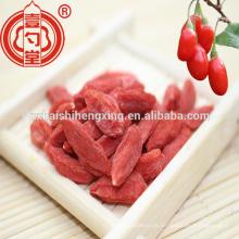 250 granos / 50 g de Ningxia Goji bayas secas mejor vendido Gojiberry