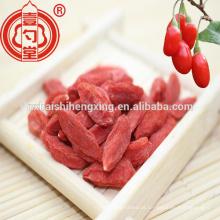 250 grãos / 50g Ningxia secas Goji berry best sellingi Gojiberry