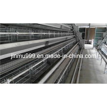 Jinfeng Automated Broile Farming Cage