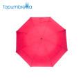 Adaptez le parapluie se pliant protégeant du vent de double couche d'impression en soie Est pour deux personnes