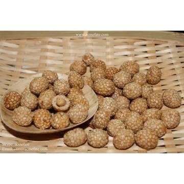 Sesam beschichtete Erdnuss