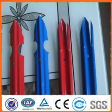 Clôture en palissade de jardin revêtue de PVC (fabricant)