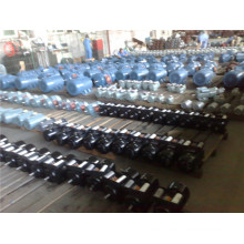 Y Series Motor (Y801-2) for Hot Sale