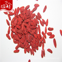 New red wholesale organic qinghai dried qinghai goji berry