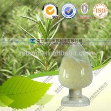 Pó ácido do ácido Ursólico do extrato 98% de Bearberry CAS: 77-52-1