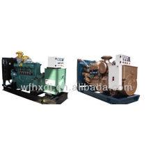 CE aprovado 50KVA geradores a diesel conjunto