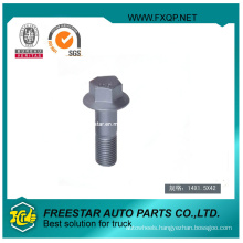 Steel Hex Head Bolt Screw with Flange