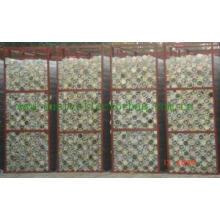Cage do filtro (pacote)