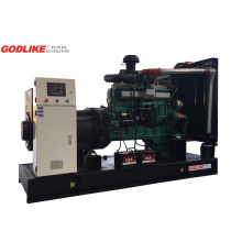 Good Price Open Type 250kVA Diesel Generator Set with Chinese Engine Shangchai