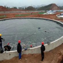 1mm pond polyethylene swimming pool hdpe geomembrane