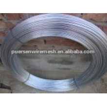 Oval Fence Wire (DCL02569)