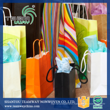 Stitchbond Polyester RPET Non-Woven Fabric for Shopping Bag
