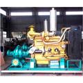 Diesel-Bewässerungspumpe der S-Serie in Australien