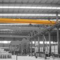 Grue monopoutre à faible hauteur libre de 5 tonnes