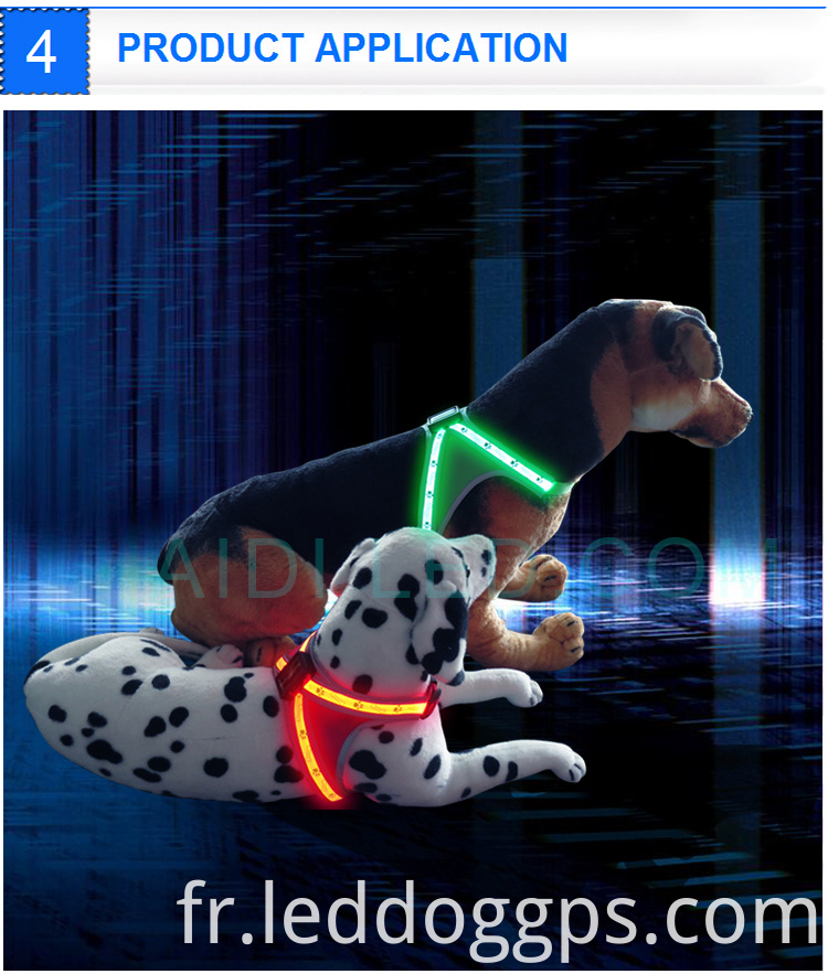 Glow In The Dark Dog Harness