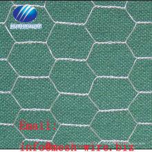 EG chicken wire mesh/chicken mesh (factory)