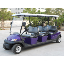 Purple Body 6 Seater Electric Golf Car with Excar Logo