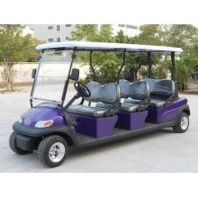 Carro de golfe elétrico de corpo roxo 6 lugares com logotipo da Excar