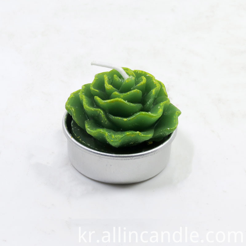 Decor Succulent Tea Light Candles