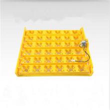 High Capacity Egg Tray Incubator With Sturdy