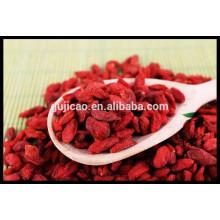 Boxthorn chino, Goji, Gou Qi Zi, bayas Goji orgánicas Wolfberry / certificadas, bayas goji baratas a precio bajo, goji fresco, goji congelado
