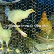 O preço da fábrica baixa o rolo de malha de fio de galinha