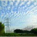 220kV Corner Terminal Power Transmission Angle Steel Tower