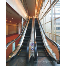 Home Escalator for Commercial Buildings 35′ Use Japan Technology (FJF-W-6000)