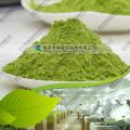 Натуральный дегидратированный порошок травы ячменя
