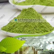 Best Selling 100% Natural Green Barley Grass Powder